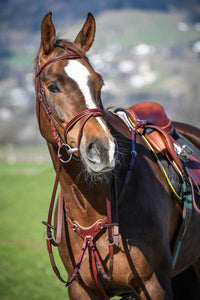 Amerigo Vespucci Flash Bridle buckle cheeks Red Brown Full with Rubber Reins