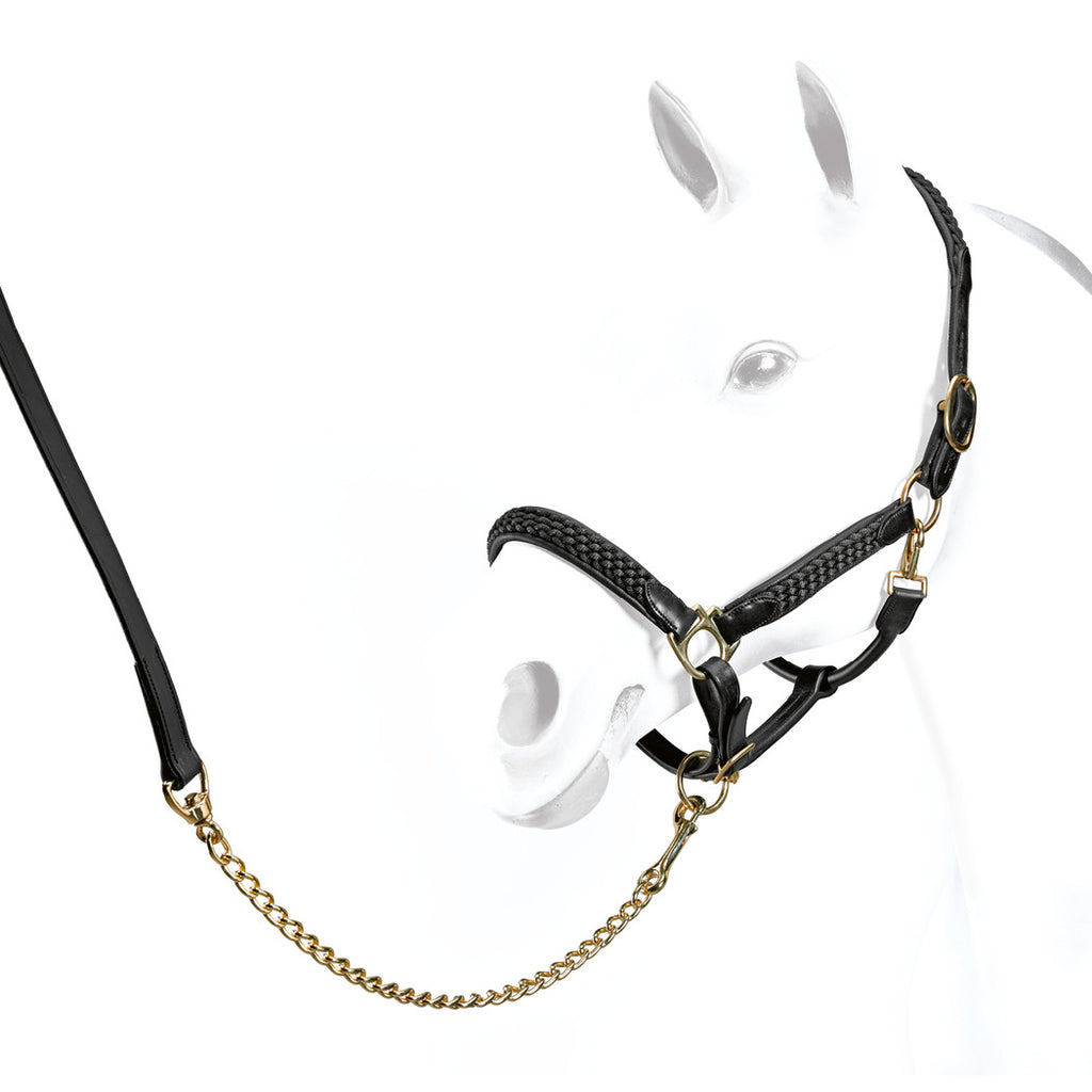 Equipe Leather Heavy Braiding Headcollar - Stunning !