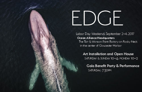 EDGE: Gala Benefit Party & Performance