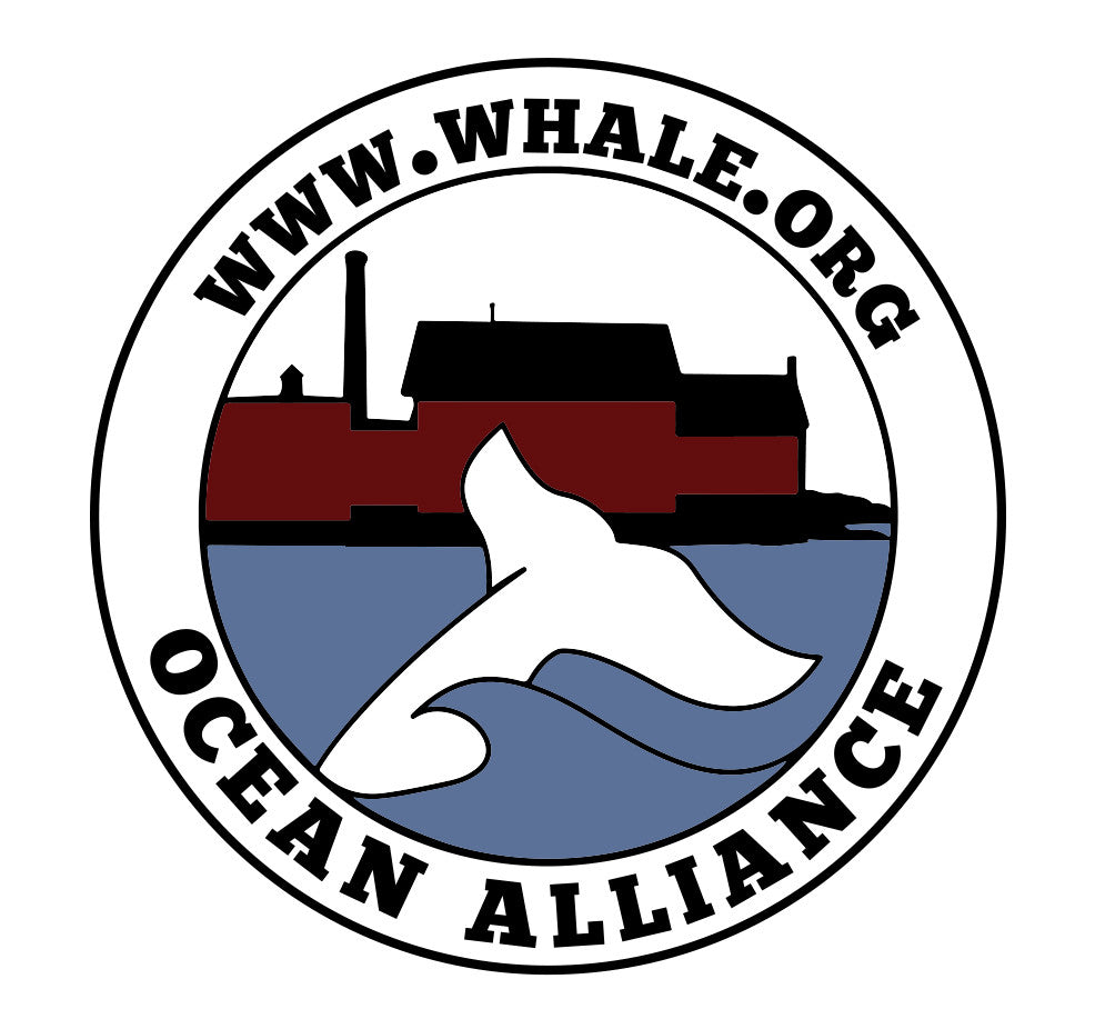 Ocean Alliance Logo Sticker