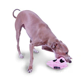 Outward Hound Juguete Bottle Buddies Squeak Cerdito Woofstore  - 6