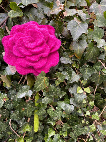 Beautiful Felted Blooming Rose Pink