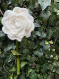 Beautiful Felted Blooming Rose White