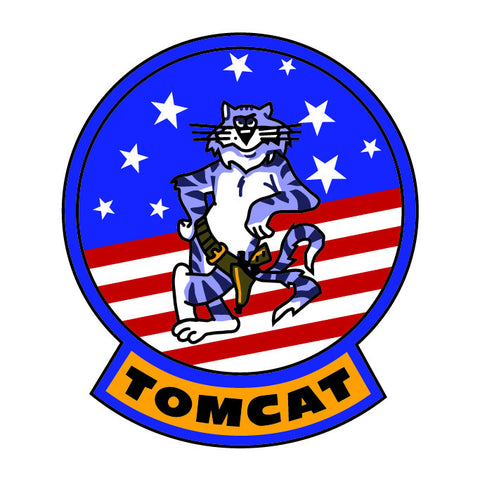 F-14 Tomcat Deposit - Military Access Only