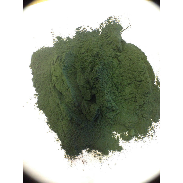 Spirulina Powder Organic, India 1 oz. #9851