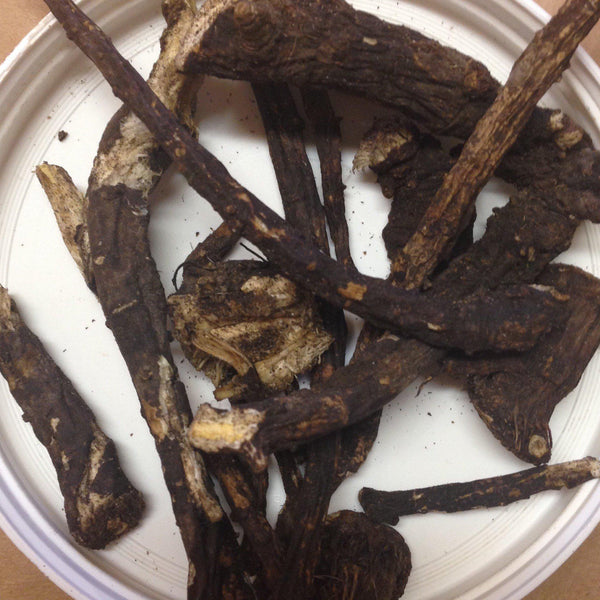 Osha Root Whole 1 oz. - Rosemary's Garden