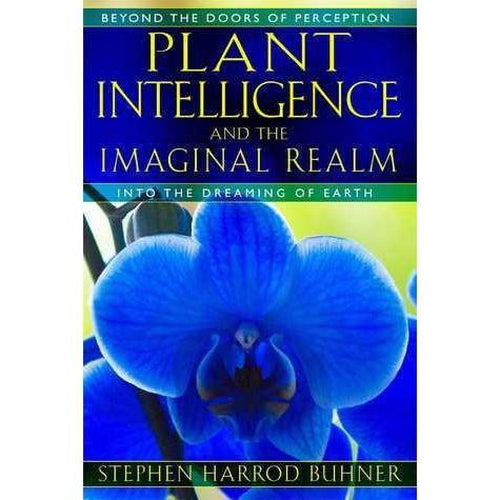 Plant Intelligence and The Imaginary Realm