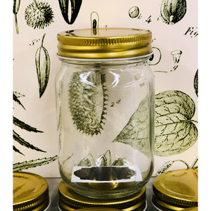 Mason Jar 12 fl.oz. Gold Lid