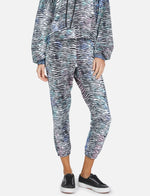 Load image into Gallery viewer, Nate Tiger Tie Dye Sweatpant