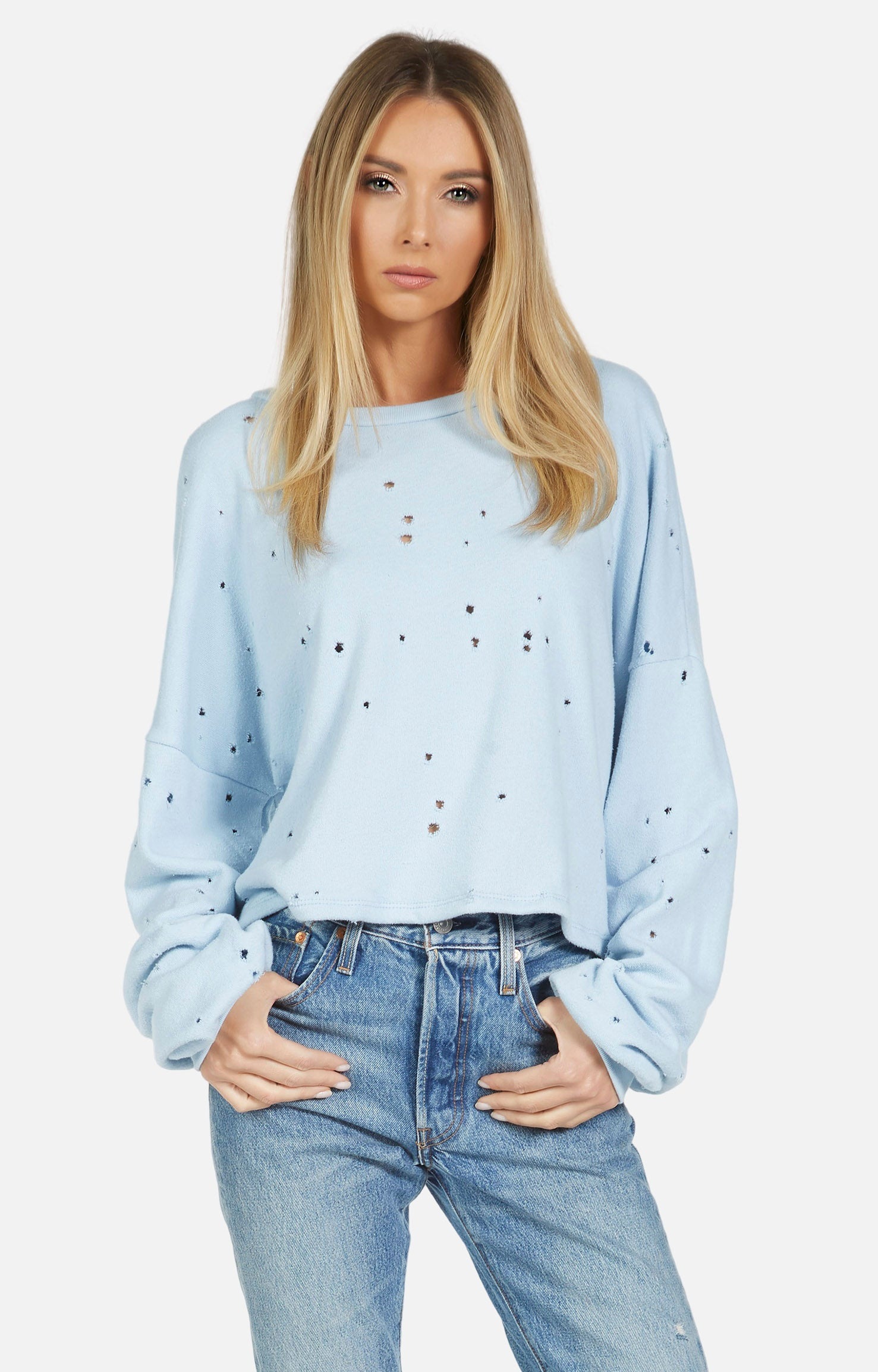 Fairfax Holey Crop Sweatshirt