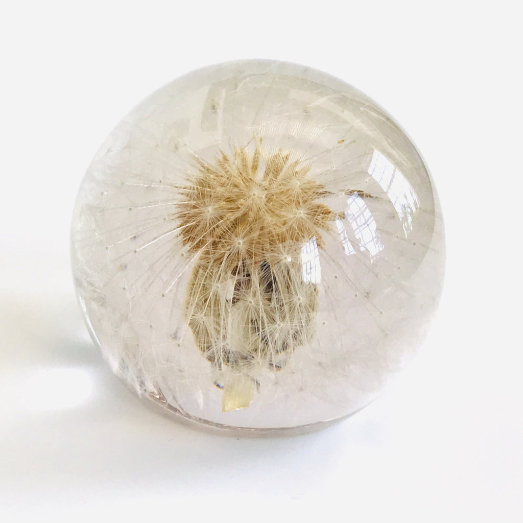 Sustainable Plant Based Eco-Resin Sphere Paperweight - Dandelion