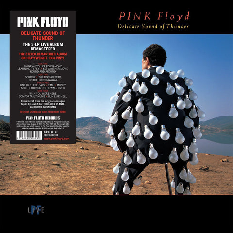 Pink Floyd - Delicate Sound Of Thunder (Live in Concert)