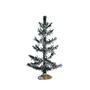 Lemax 74261 White Pine, Medium, Tree- Gift Spice