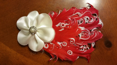 Arched Feathers Headband