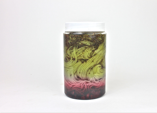 Natural Dye Kit - Yarn  -  Dye Your Own Yarn
