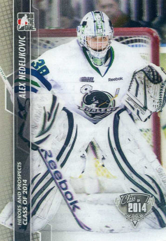 2013-14 In The Game – Heroes & Prospects	 # 181 Alex Nedeljkovic
