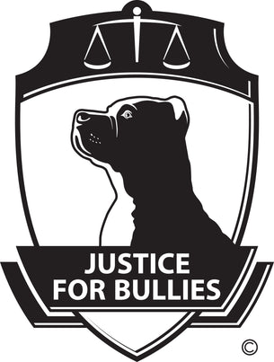 Justice for Bullies