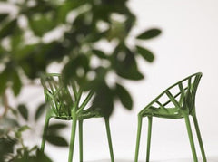 The Vegetal chair with the plants it was inspired by.