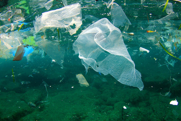 plastic pollution floating in the sea