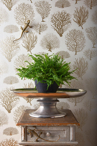 Seafern wallpaper from Cole and Son, available at WBJamieson.com