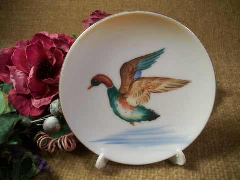 Bird Duck Mallard Flying Over Water Small Decorative Dish Porcelain Plate Blue Green Brown Gold Key Trinket Tray
