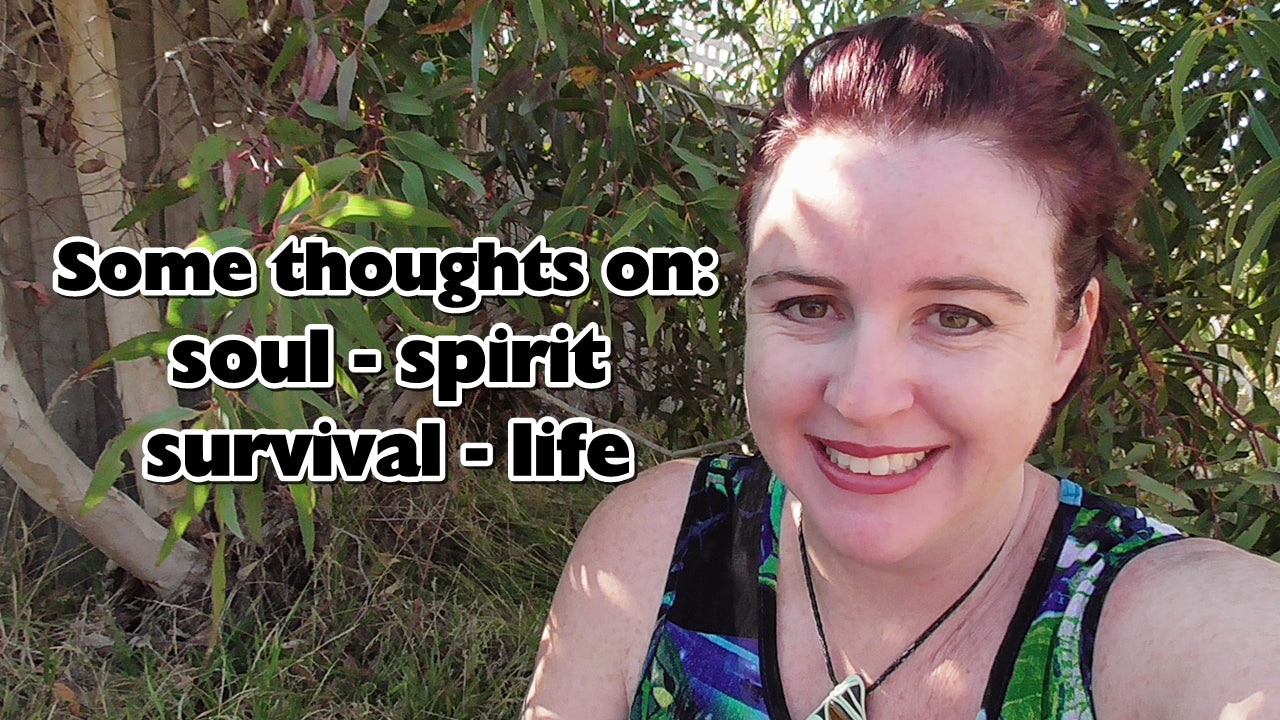 My thoughts on soul, spirit and survival