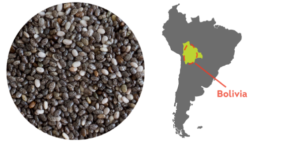Chia from the mountains of Bolivia, South America.