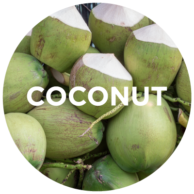 Purely Learn: Coconut