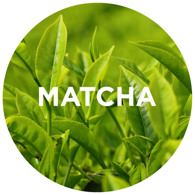 Purely Learn: Matcha