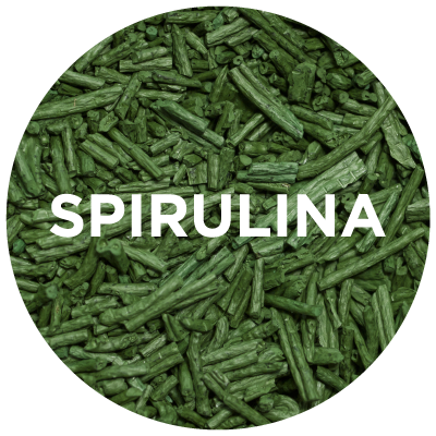 Purely Learn: Spirulina