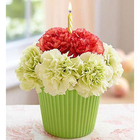 Blooms N Roses Flowers & Gifts Flowers Birthday Bloomin' Cupcake & Candle