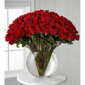 Blooms N Roses Flowers & Gifts Flowers Breathless 100 luxury red roses