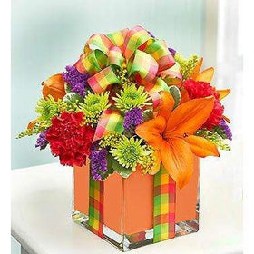 Blooms N Roses Flowers & Gifts Flowers Exuberance All Wrapped For You