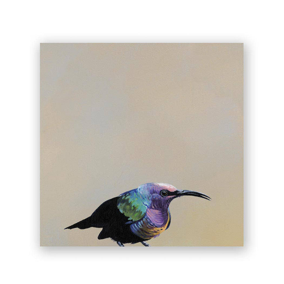 6x6 cedar Sunbird on wood bird collection décor piece from Mincing Mockingbird