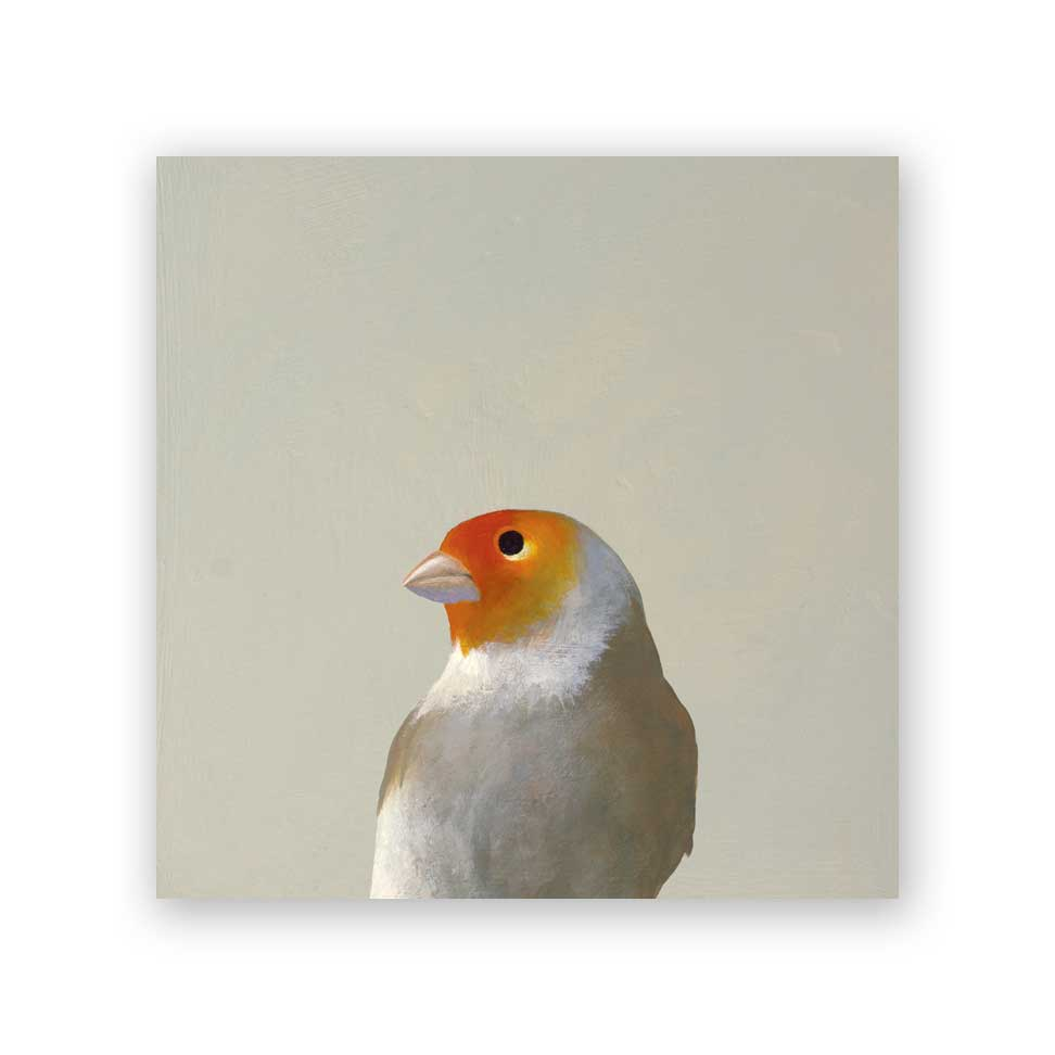 6x6 fictional finch on wood bird collection décor piece from Mincing Mockingbird