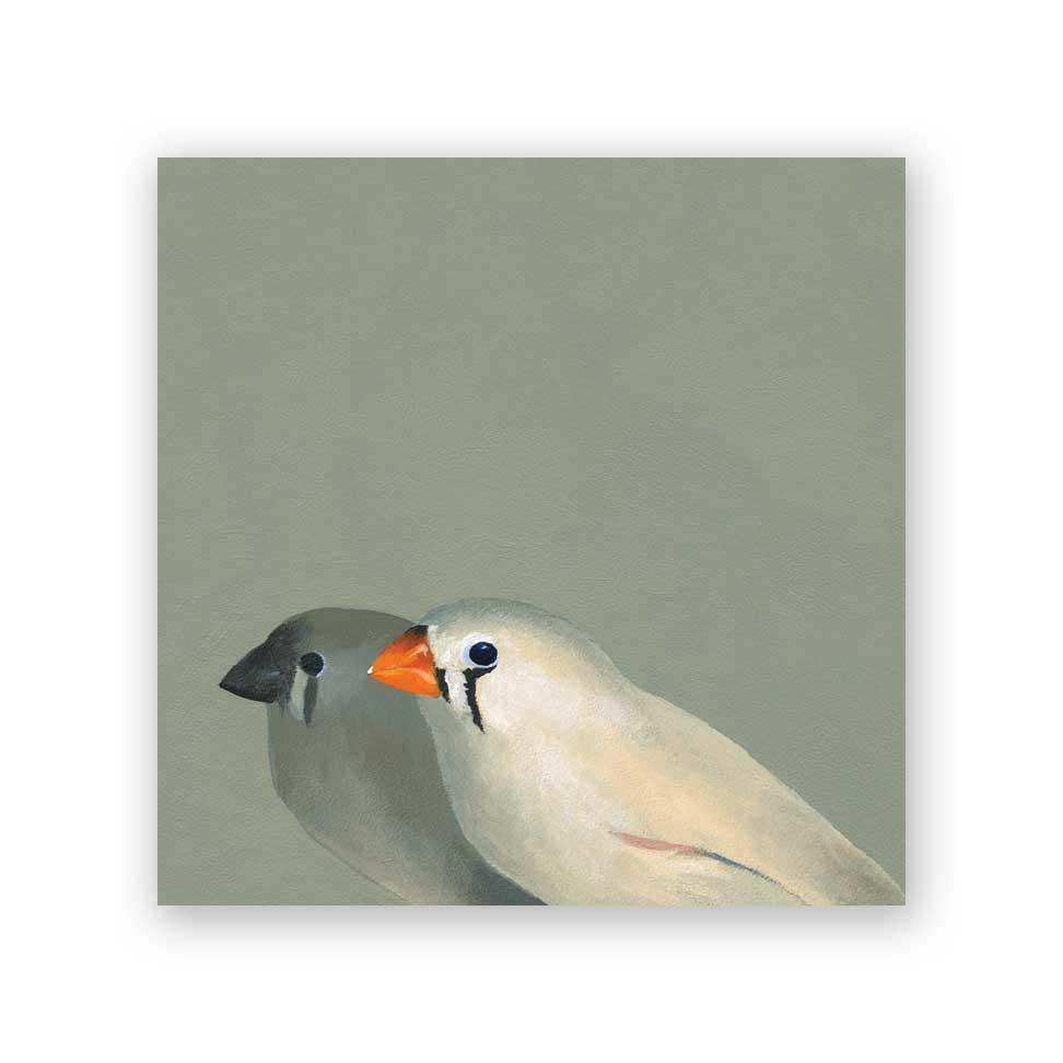 6x6 zebra finch pair on wood