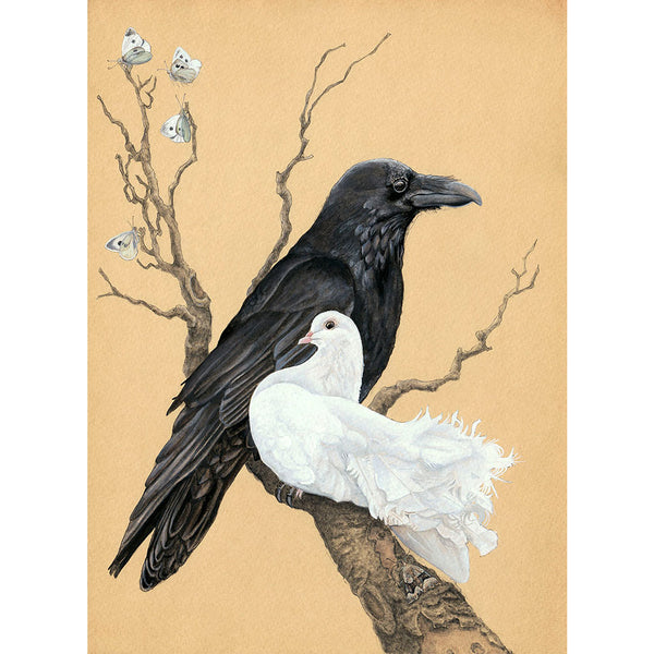 Raven and Dove print by Amy Rose Moore.  From original watercolor, gouache and ink painting.