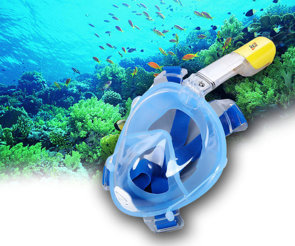 Snorkeling's Diving Mask