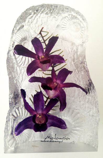 Orchids Acrylic