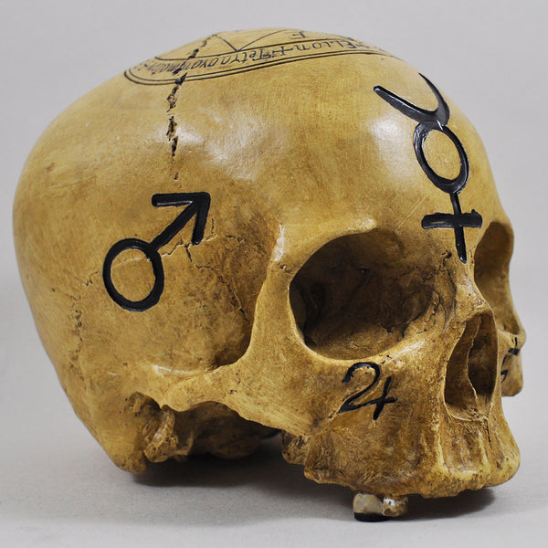 Witchcraft Skull - Prezents.com