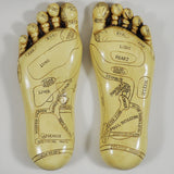 Reflexology Feet Sculpture by Tina Tarrant - Prezents.com