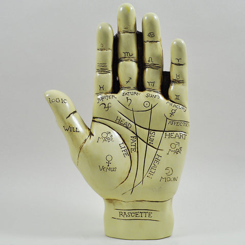 Palmistry Hand Sculpture - Prezents  - 1