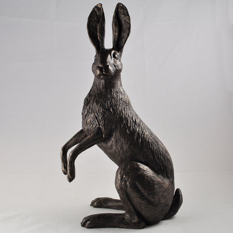 Ivy Hare Cold Cast Bronze Sculpture by Harriet Glen - Prezents.com