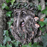 Tree Ent with a Pointed Nose - Wall Plaque - Prezents  - 1