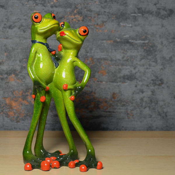 Comical Frogs - Couple Posing