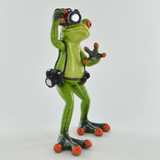 Comical Frogs - The Photographer