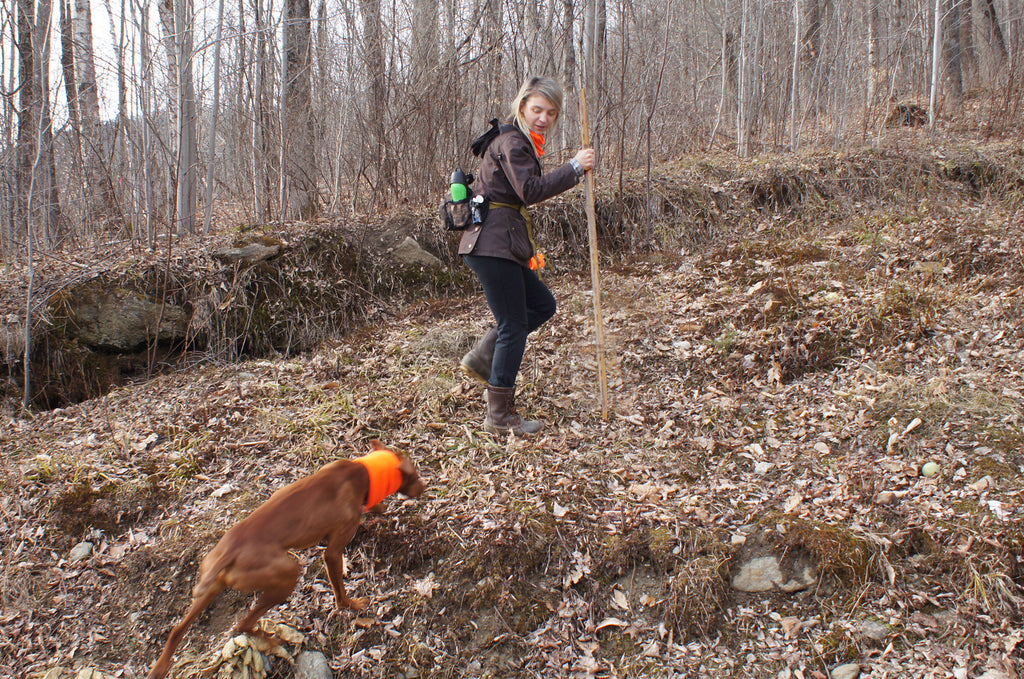 Don't lose your blur of fur! Keep your dog bright safe and visible with Turtle Fur. Stay Visible during hunting season in blaze orange, Glostik yellow and other neon hi vis colors.