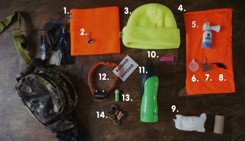 What's in your pack when you hike with your dog? These are great hike hacks to consider on your next adventure in the forest!