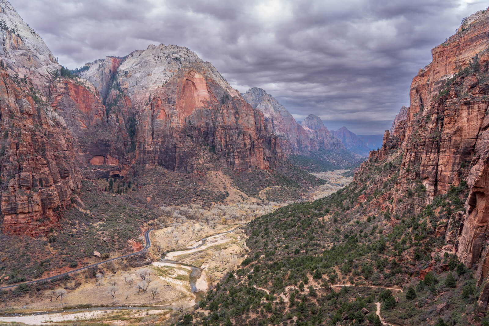 Zion National Park, What to do in Zion National Park
