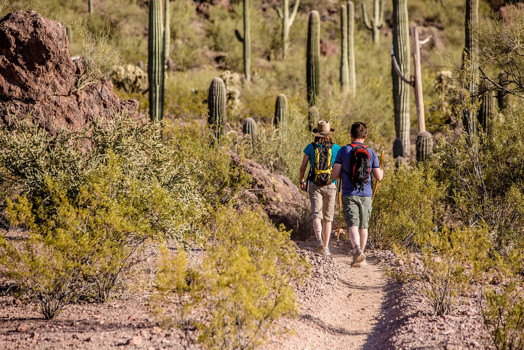 Best local hiking trails, eco-friendly hiking tips